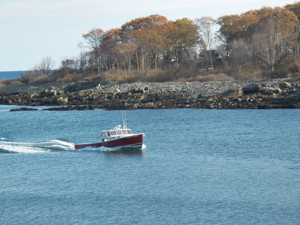 Boat In York Harbor
